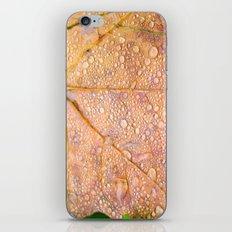 On a Rainy Monday iPhone & iPod Skin