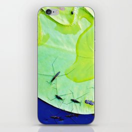 Water striders on lily pad iPhone Skin