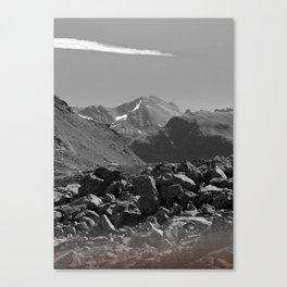 WF Canvas Print