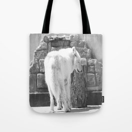 Lakota licking his nose Tote Bag