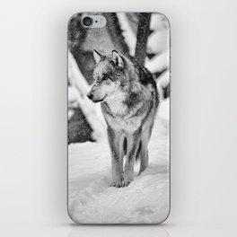 Remembering snow iPhone Skin