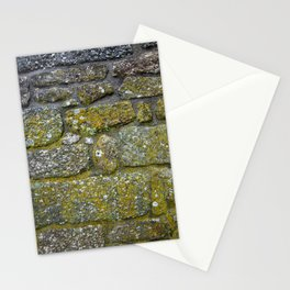 Old granite wall with grey and green colors Stationery Cards