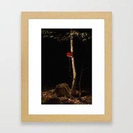 tree 3 Framed Art Print