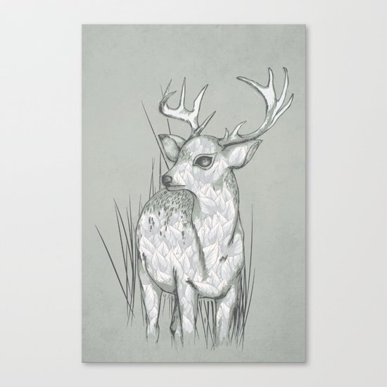 White-Tailed  Canvas Print