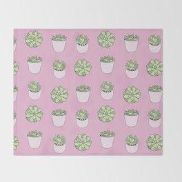 pink suculents in flowerpots Throw Blanket