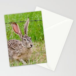 You can't see me... Stationery Cards