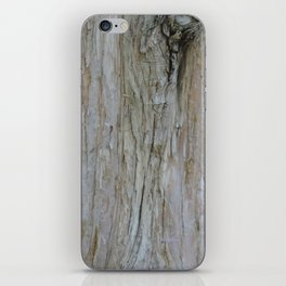 TEXTURES -- Dawn Redwood Bark iPhone Skin