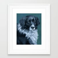 border collie Framed Art Prints featuring Border Collie by MMGoldenArt