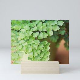 Wildwood Mini Art Print