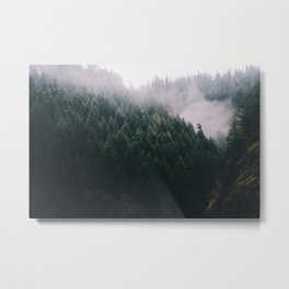 Forest Fog V Metal Print