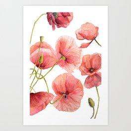 Red Poppies Bright Sunlight, Big Beautiful Red Flowers Art Print
