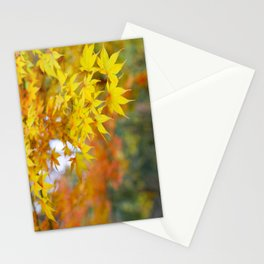 Japanese maple in yellow and orange Stationery Cards