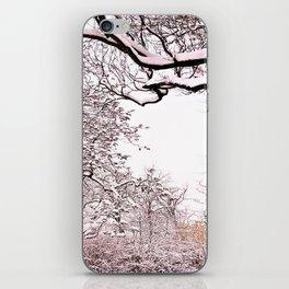 Wintertime is coming iPhone Skin