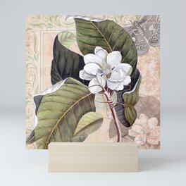 Vintage White Magnolia Mini Art Print