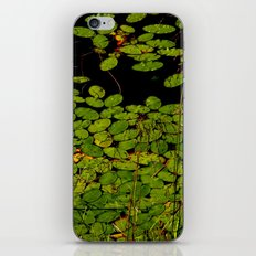 Sprinkles of green iPhone & iPod Skin