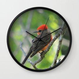 Vermilion Flycatcher Wall Clock