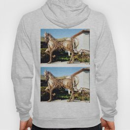 Horse & Plough by Shimon Drory Hoody