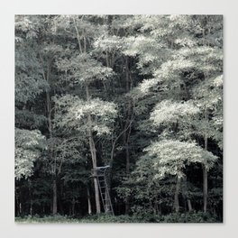 FORET 001 / 08 Canvas Print