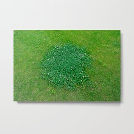 The grass is green Metal Print