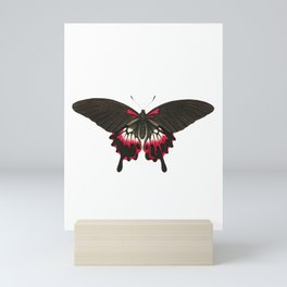 Caudated brown butterfly Mini Art Print