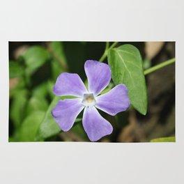 Lilac Periwinkle Rug
