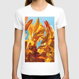 Autumn colors leaves against the blue sky #decor #society6 T-shirt