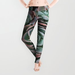 Pink & Green Succulent Garden Leggings