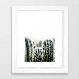 Cactus 1 Framed Art Print
