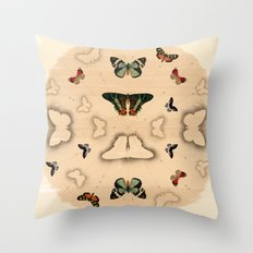 Butterfly Coordinates Throw Pillow