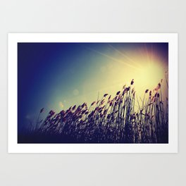 and there was light. Art Print