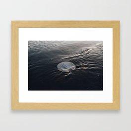 She Sells Seashells by the Seashore Framed Art Print