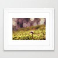 mushroom Framed Art Prints featuring mushroom by anitaa
