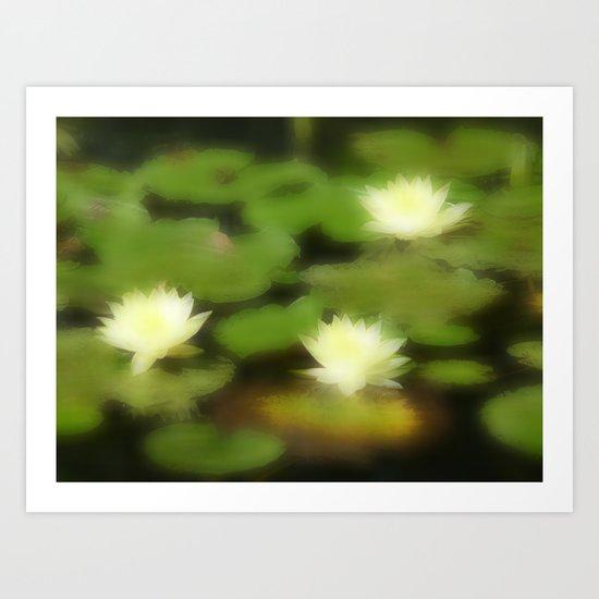 Flower 4  Water Lillies Art Print