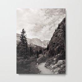 Following the Path Metal Print