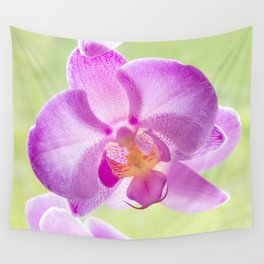 Backlit Iris Wall Tapestry