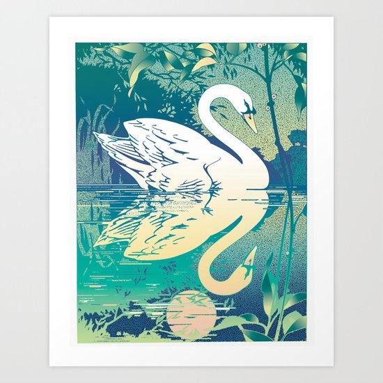 Swan Refection Art Print