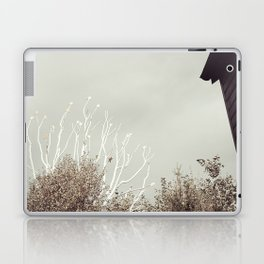 The stars Laptop & iPad Skin