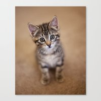 minnie Canvas Prints featuring Minnie by Mike Girod