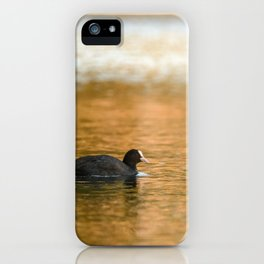 swimming trough gold iPhone Case