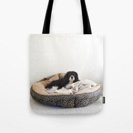 Sleepy Cavalier Tote Bag