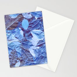 The blue carpet Stationery Cards