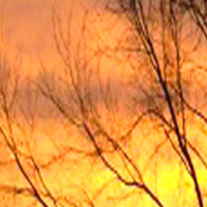 Radiant Sunset Leggings