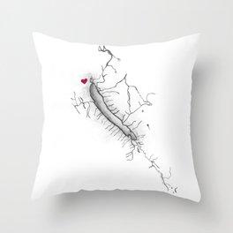 Otisco Lake Home Throw Pillow