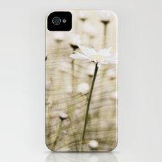 Daisy Fields 4eva iPhone (4, 4s) Slim Case
