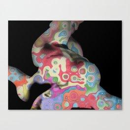 Camuflaje Canvas Print