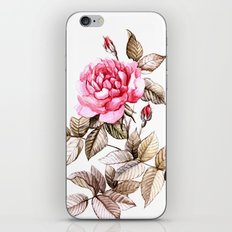 Watercolor rose iPhone & iPod Skin