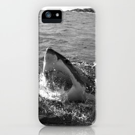 Great white shark, Carcharodon carcharias, in black and white iPhone Case