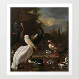 Melchior d'Hondecoeter - A pelican and other fowl at a water basin, known as 'The floating feather' Art Print