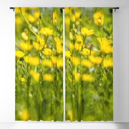 Buttercups in motion Blackout Curtain