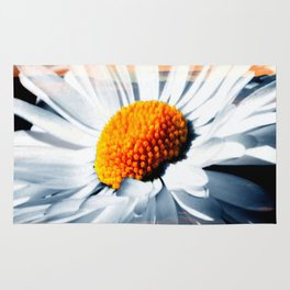 Daisy In Sunset By Annie Zeno Rug
